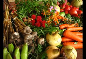 Транспортирането на нашата храна като плодове и зеленчуци също замърсява околната среда, така че един вариант да я опазим по-чиста е да избираме сезонни зеленчуци и плодове, които се добиват възможно най-близо до нашия район.